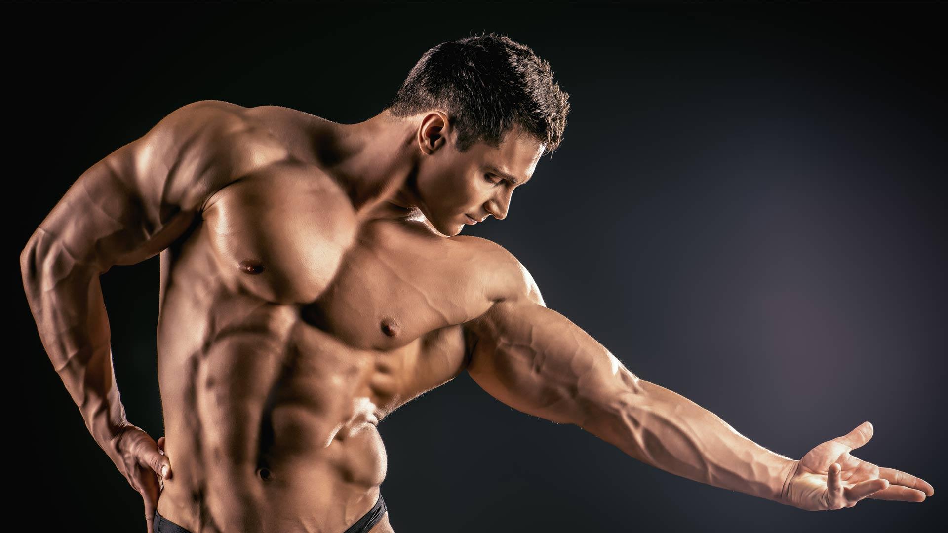 spiermassa-spierkracht
