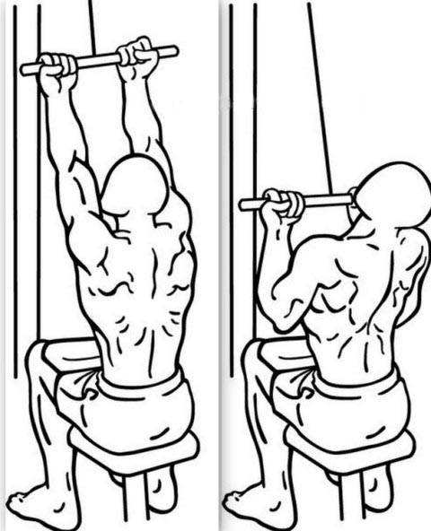 Best fat loss diet pills, cable lat pulldown with ...