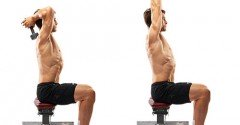 Seated Dumbbell Extension