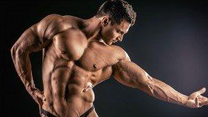 Hoeveel spiermassa kun je aankomen?