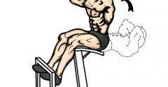 Roman Chair Sit Up