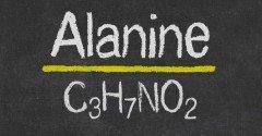 Beta-Alanine: een werkzaam supplement?