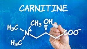 Carnitine: de belangrijkste informatie