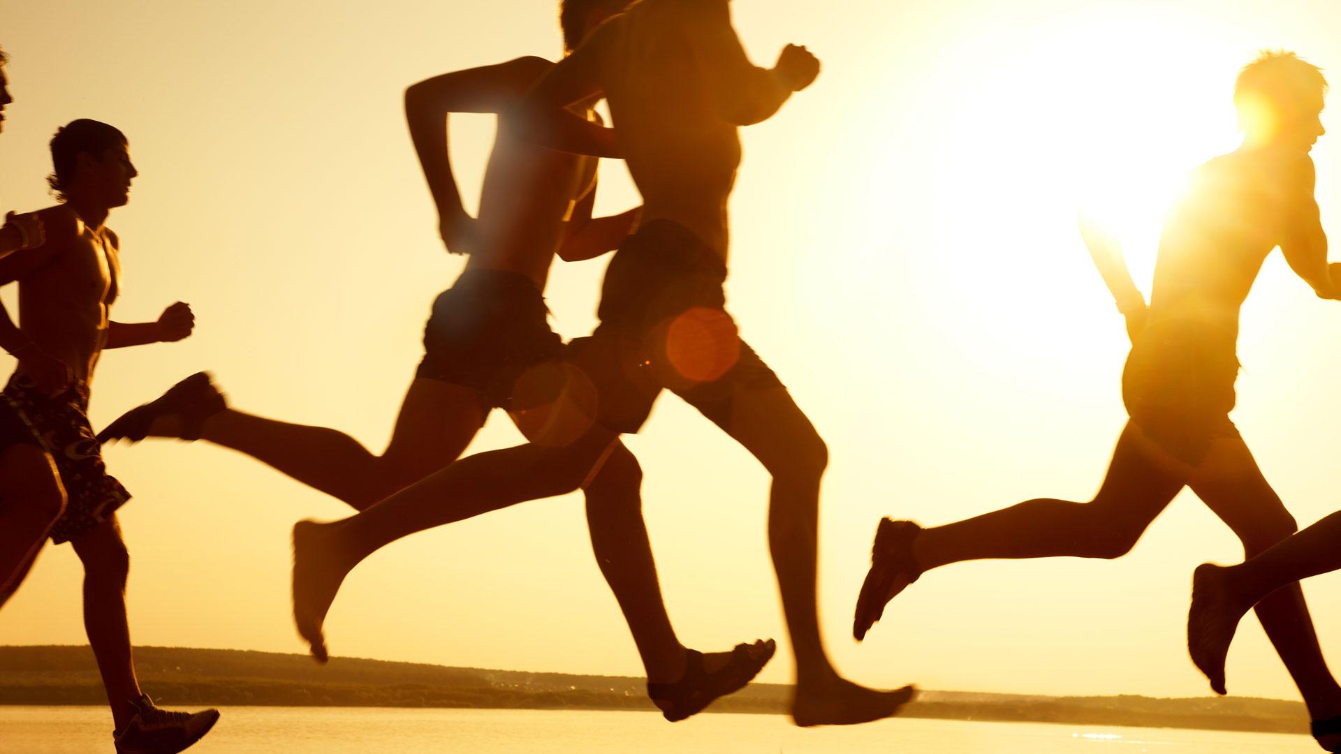 aminozuren sporten
