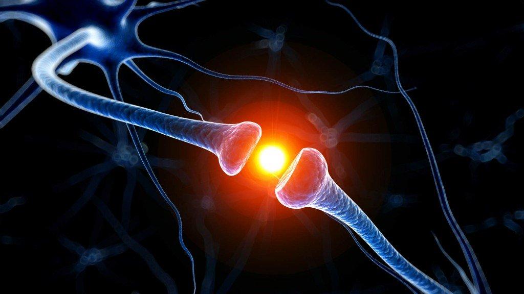 hersenen-ouder-worden