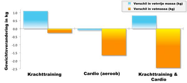 hoe vet verbranden fitness