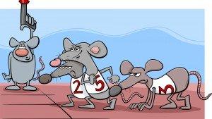 Ratrace: alsmaar verder, beter en sneller!