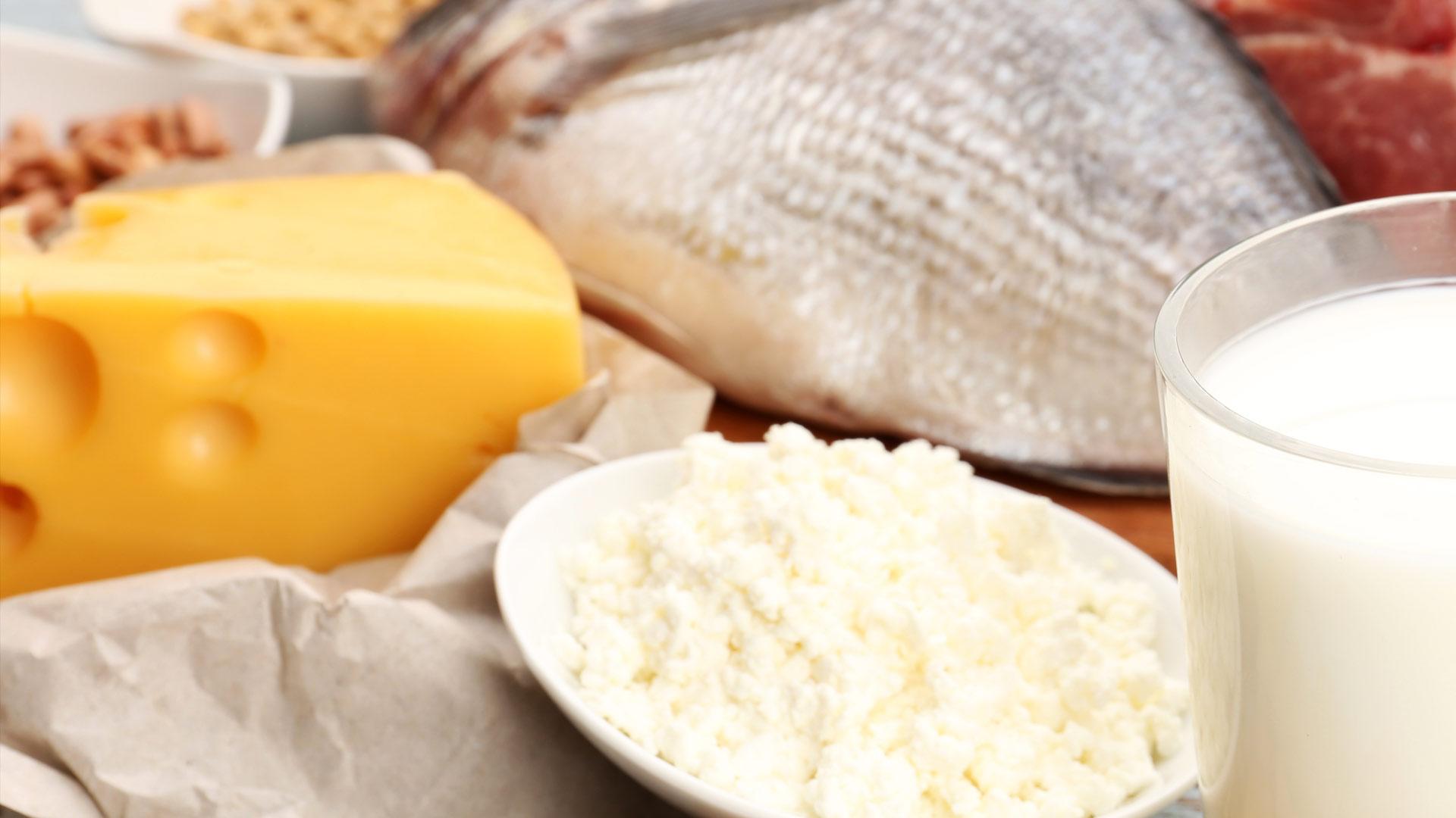 wat zijn eiwitten producten