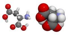 Hoe goed werkt D-Aspartic Acid?