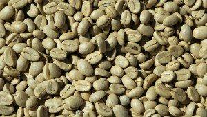 Afvallen met groene koffiebonen?
