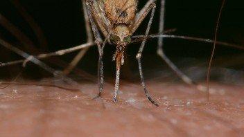 mug-gebeten