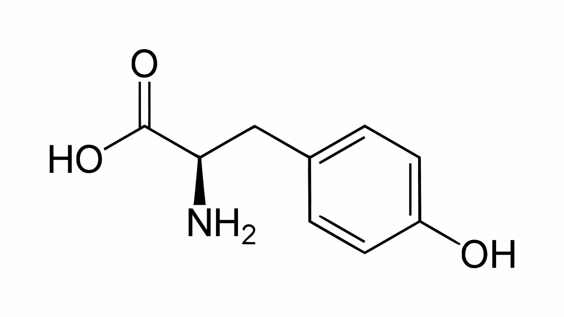 serine aminozuur