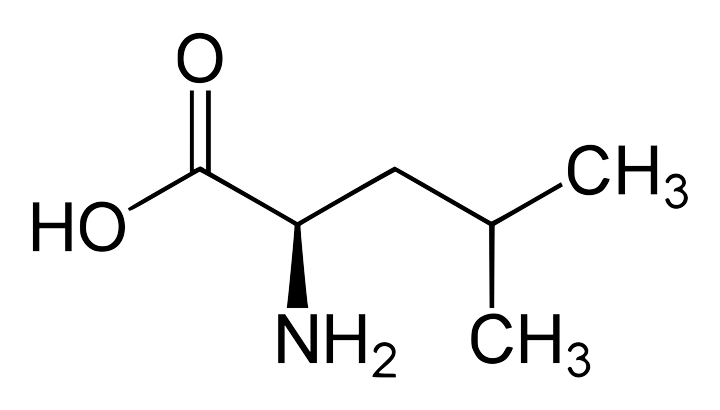 leucine-formule