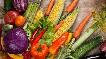 advies-vegetarier