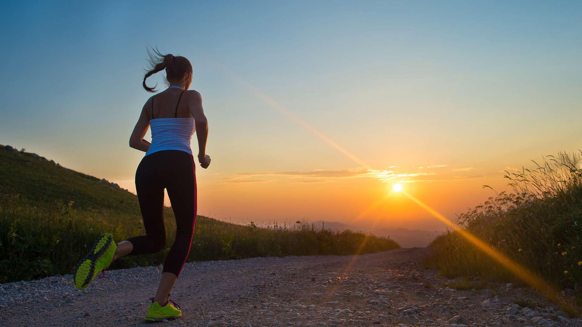 fitness krachttraining