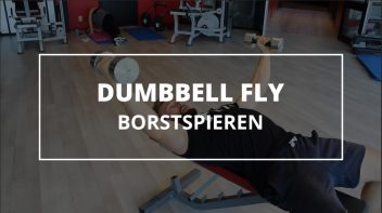 dumbbell-fly