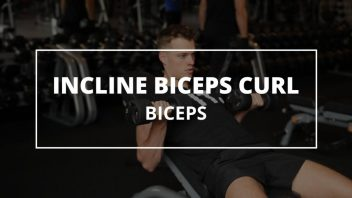 incline-biceps-curl