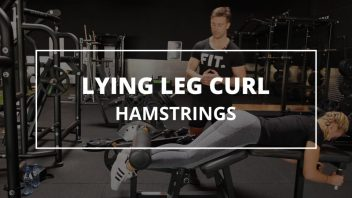 lying-leg-curl