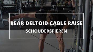 rear-deltoid-cable-raise