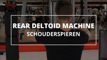 rear-deltoid-machine