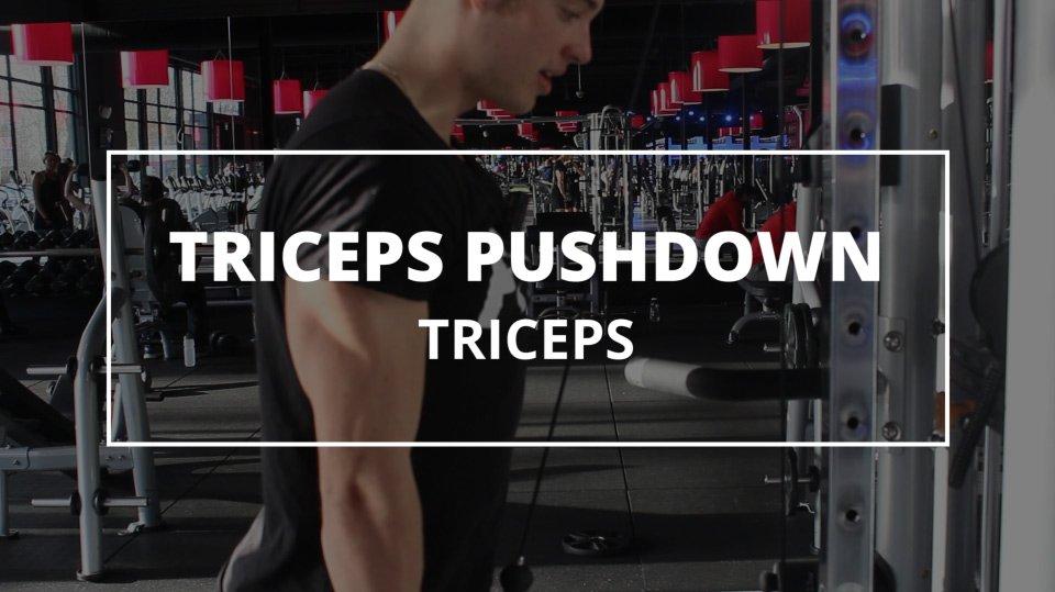 triceps-pushdown