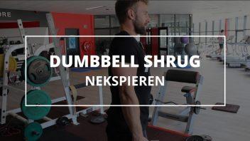 dumbbell-shrug