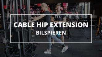 cable-hip-extension