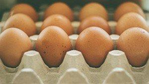 Feit of fabel: 30-gram-eiwitregel