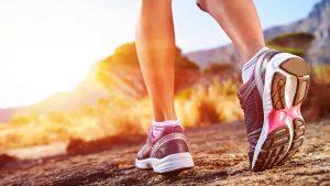 Waarom wandelen zo gezond is