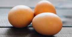 Eieren: de belangrijkste informatie