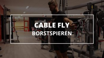 cable-fly