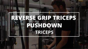 reverse-grip-tricep-pushdown