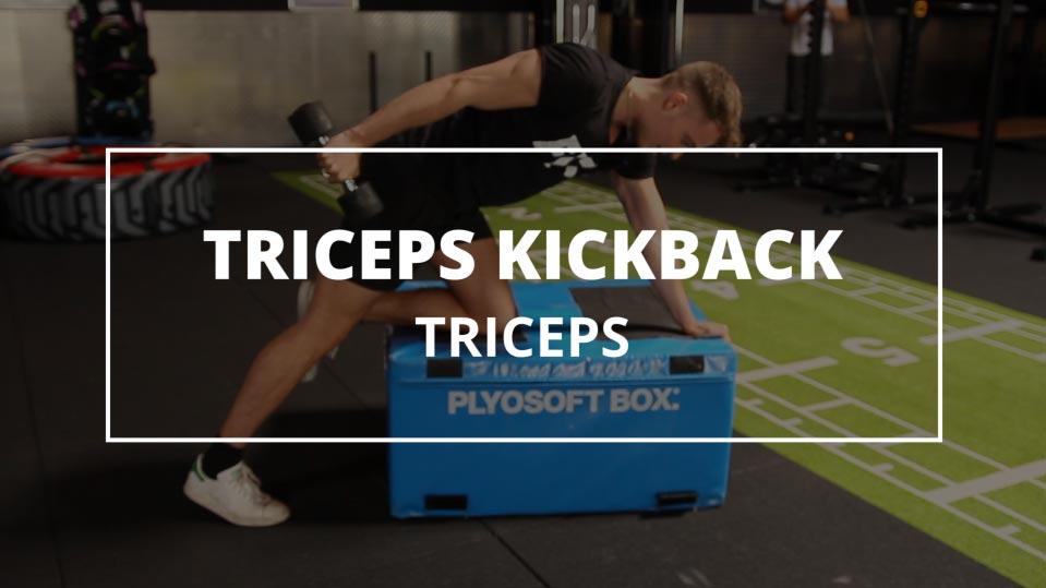 triceps-kickback