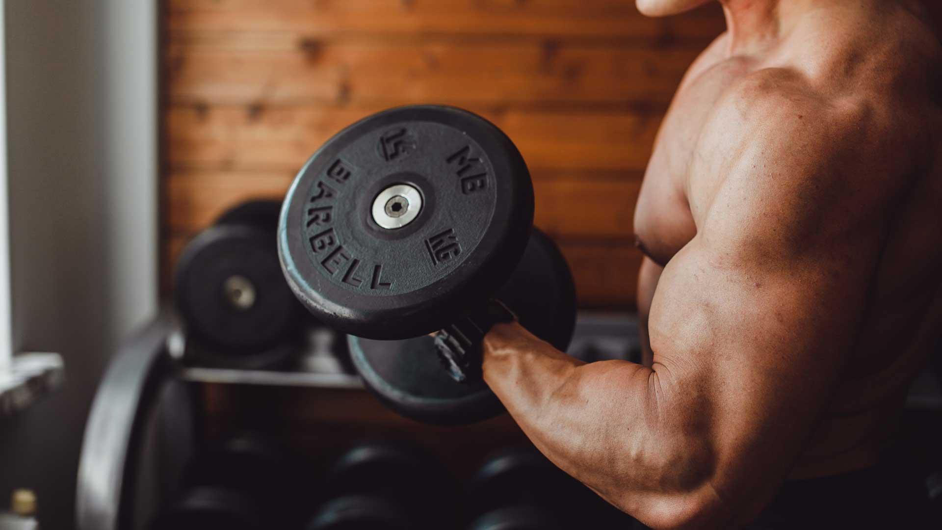eetschema fitness spiermassa