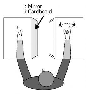 mirror cardboard