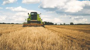 Bevatten onze voedingsmiddelen minder voedingsstoffen dan vroeger?