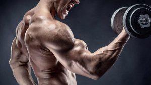 De 6 grootste fabels over krachttraining en spiermassa