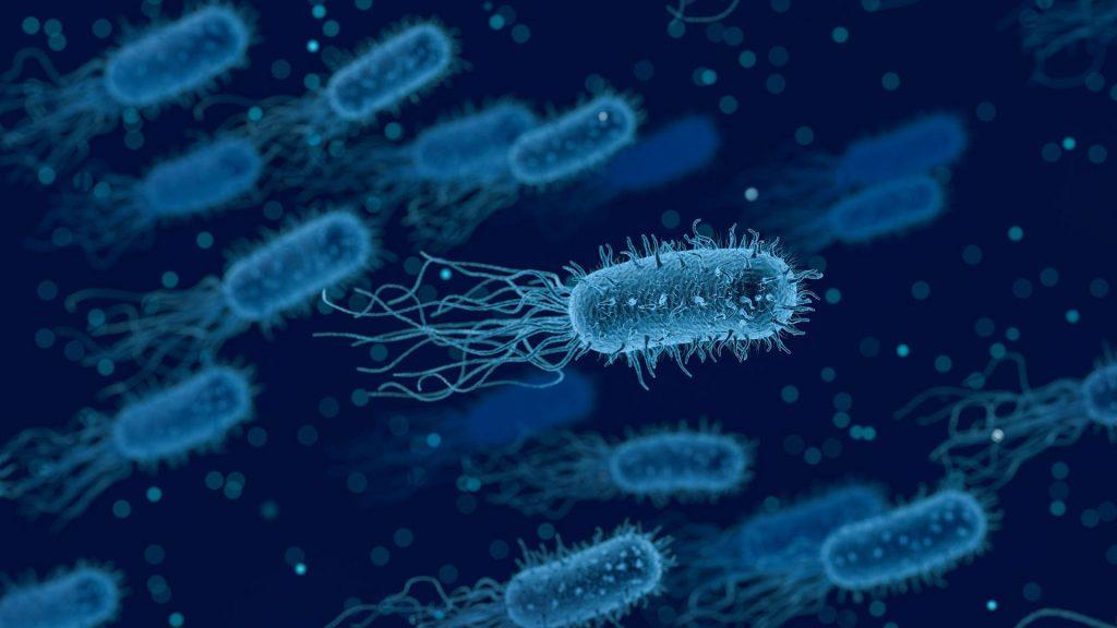 eten-ziekte-bacterie