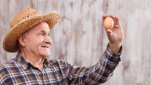 1 april grap: FIT.nl lanceert FIT eiwitrijke eieren