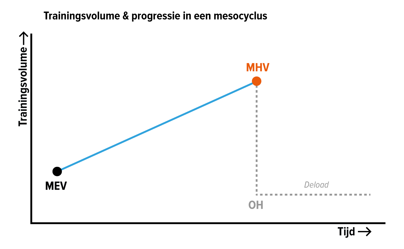trainingsvolume-progressie-cyclus