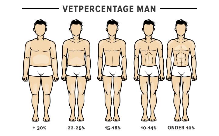 vetpercentage mannen