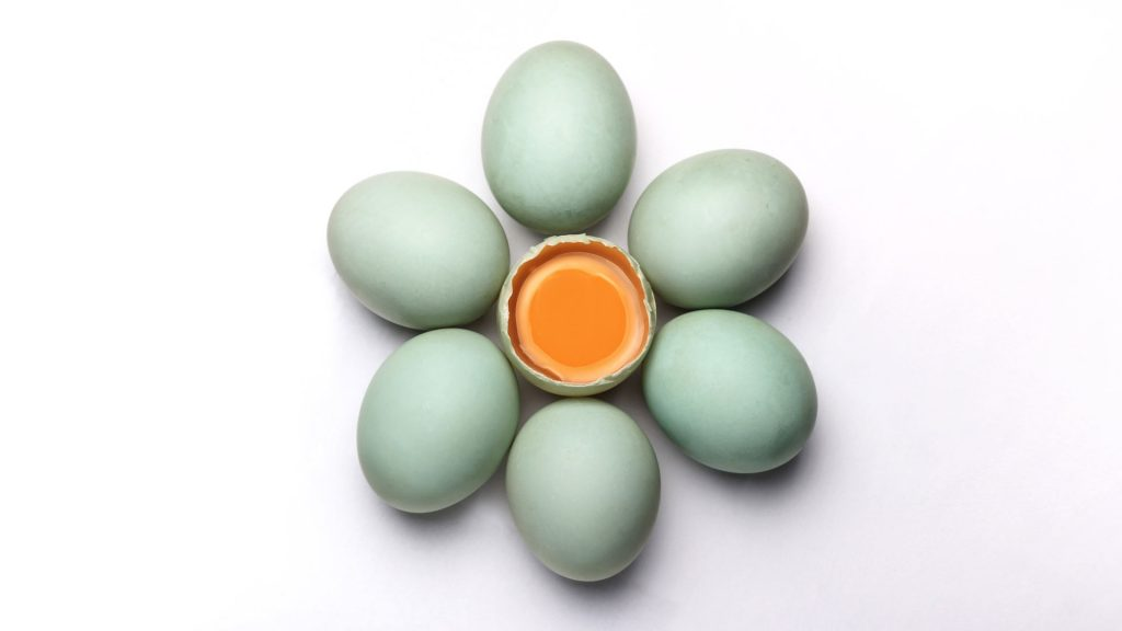 eieren-eigeel