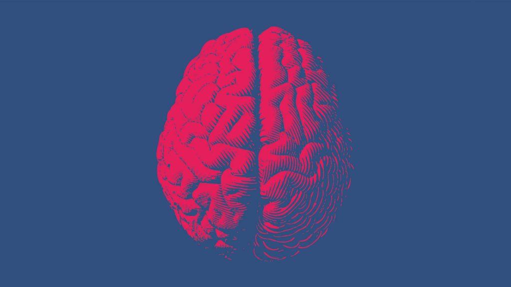 placebo-hersenen