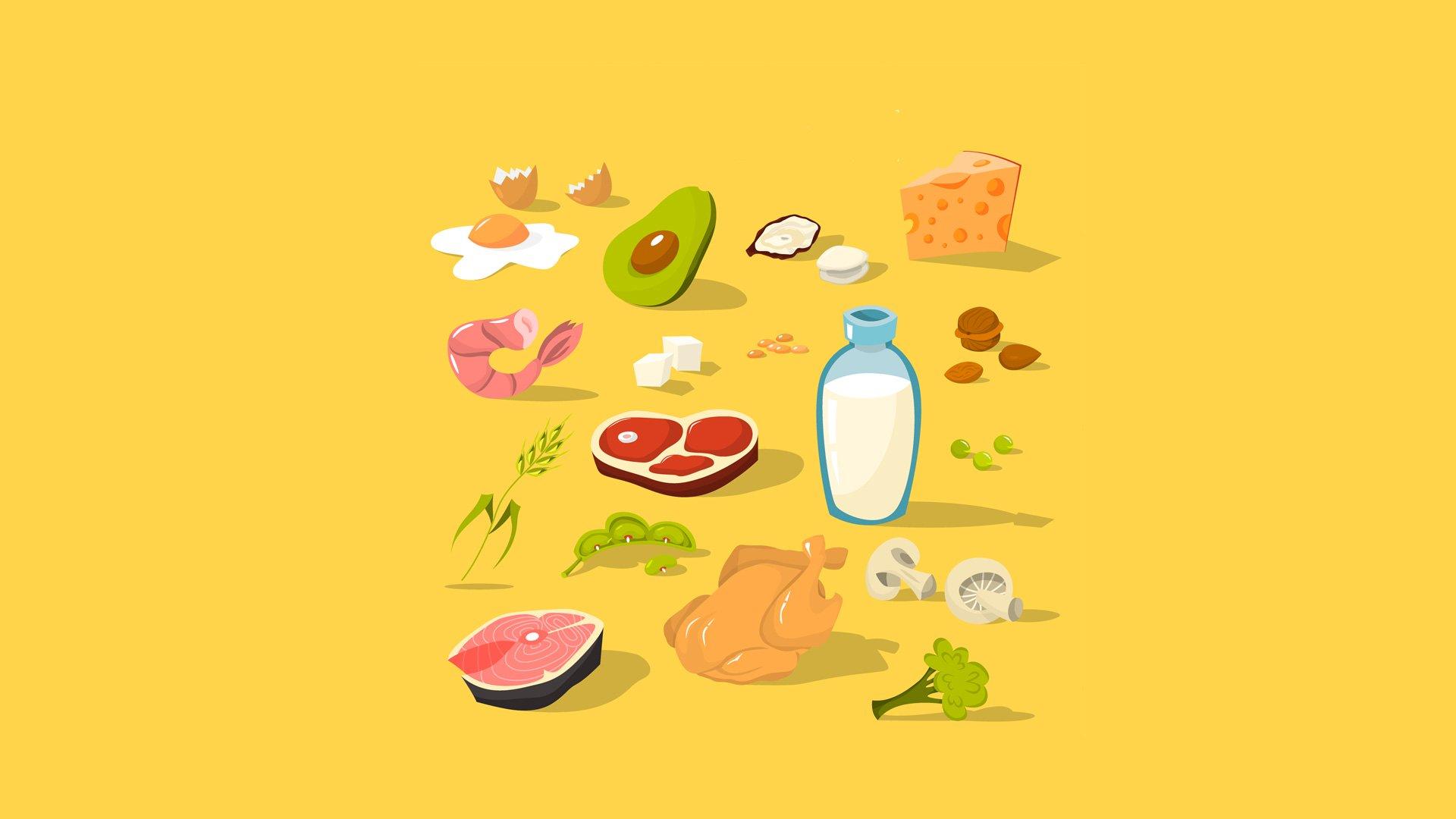 goede eiwitten voeding