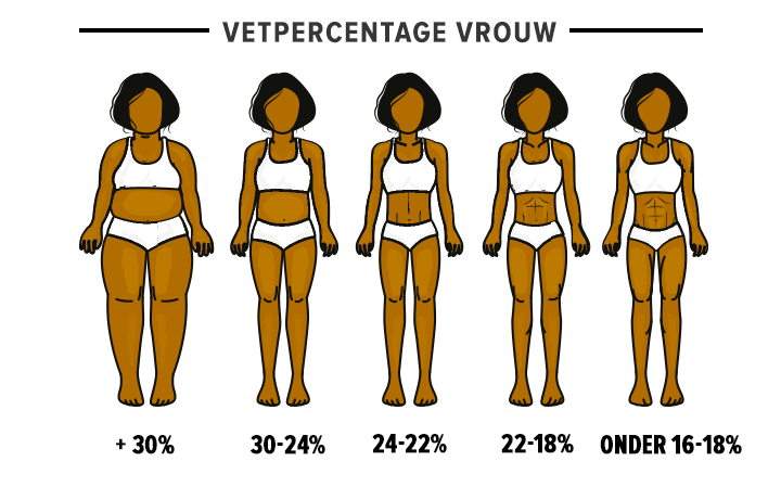 vetpercentage-vrouw